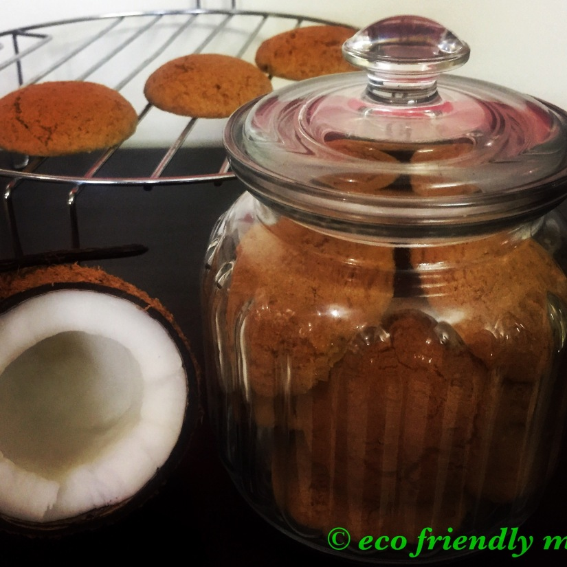 DIY organic coconut cookies recipe