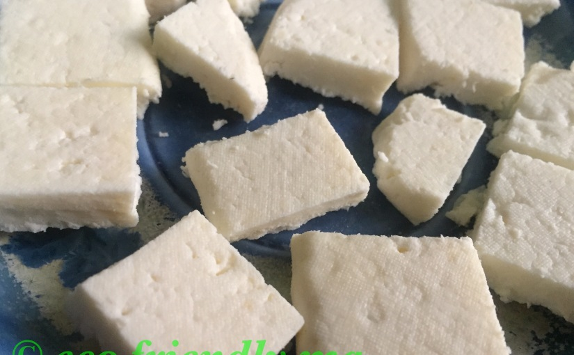 Homemade organic cottage cheese 🧀/paneer nchhena