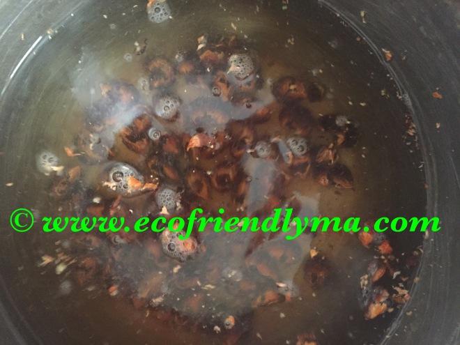 soap nut liquid concentrate recipe