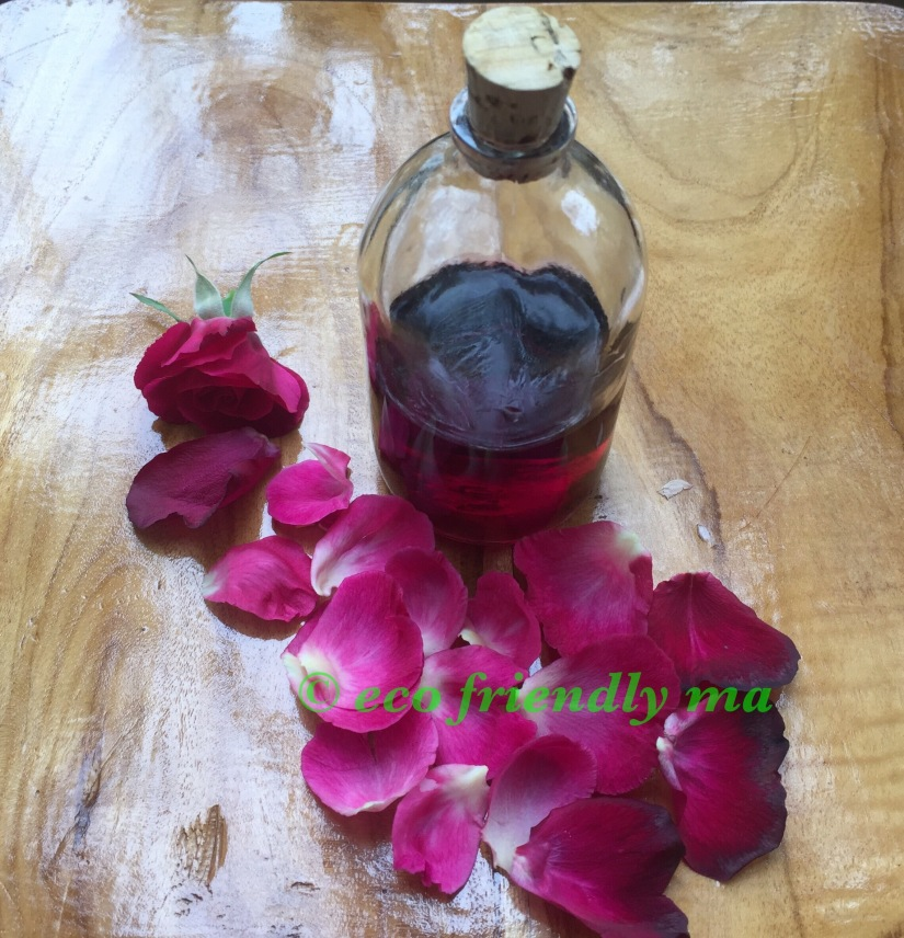 DIY rose 🌹 n witch hazel toner