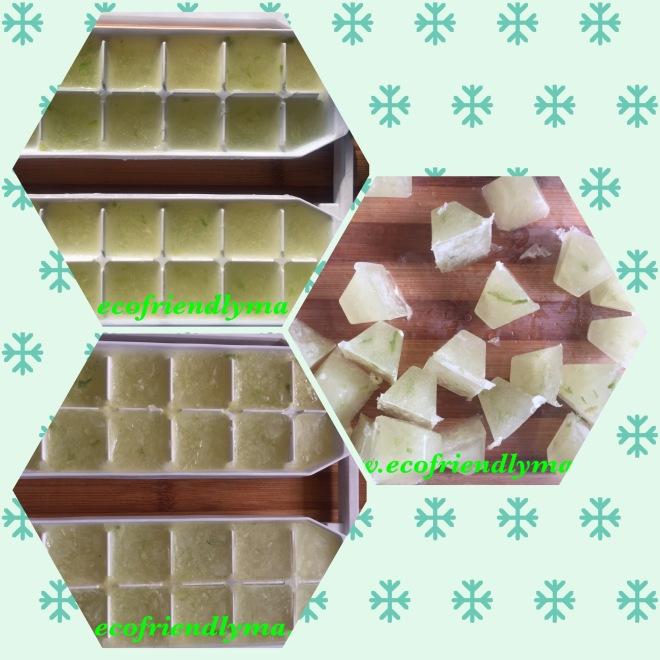DIY fresh aloe vera gel cubes