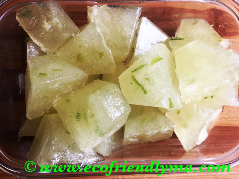 DIY fresh n all-natural  aloe vera gel n cubes
