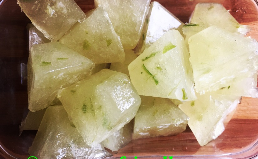 DIY fresh aloe vera cubes