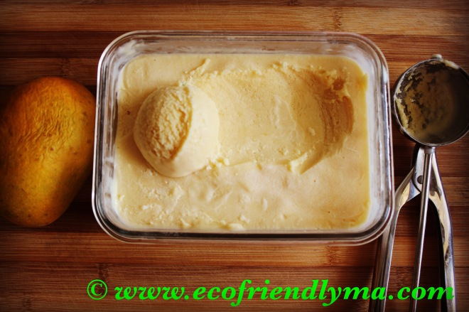 Homemade organic mango ice cream