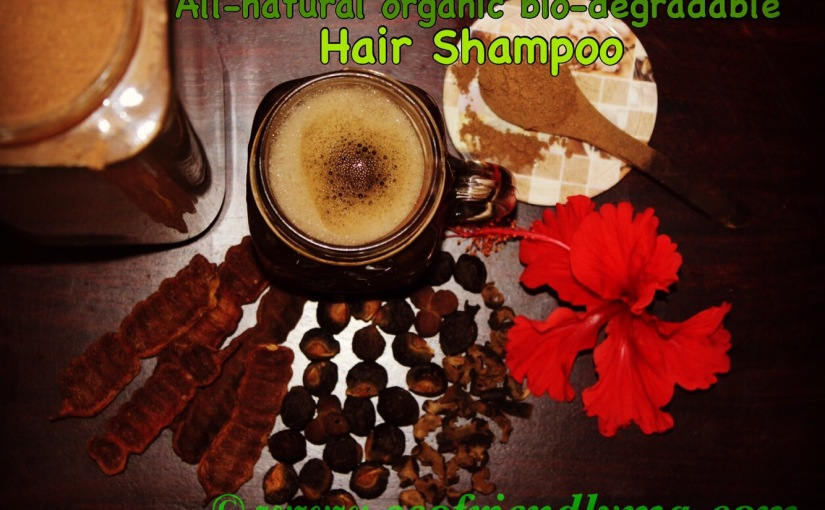DIY all-natural bio-degradable hair shampoo