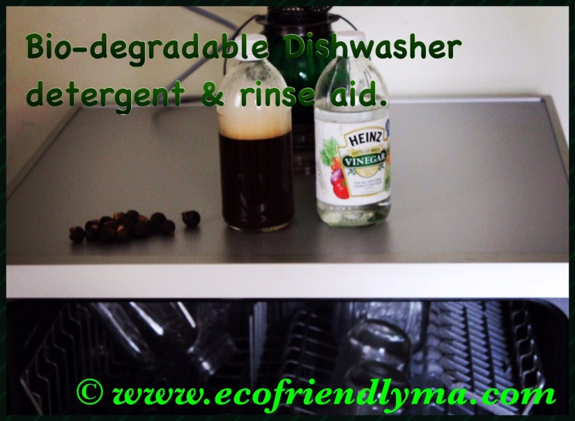 DIY bio-degradable dishwasher detergent